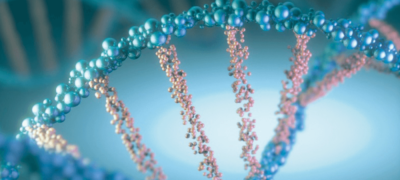 Imagen microscopio que muestra la estructura de ADN
