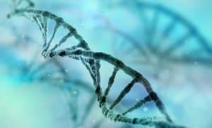 Montoliu pide que la ONU o la OMS regulen la manipulación genética en humanos