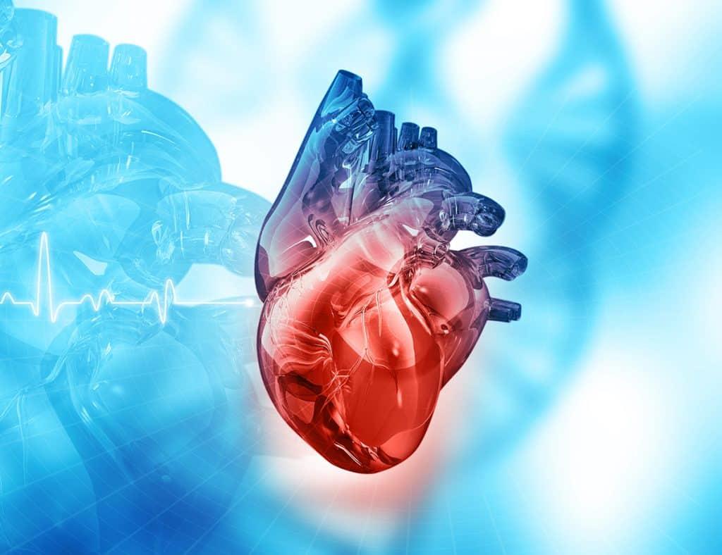 cardiopatías genéticas