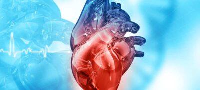 Curso de Cardiogenética 3ª Edición